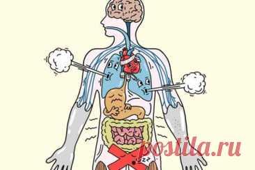 Как стресс влияет на организм - Народная медицина - медиаплатформа МирТесен Стресс негативно отражается на функциях всего организма. Он может поразить любую его систему. Среди них скелетно-мышечная, дыхательная, сердечно-сосудистая, эндокринная, желудочно-кишечная, нервная и репродуктивная системы. В этой связи важно научиться контролировать стресс. Организм быстро