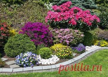 Несколько интересных «фишек» — и сад как на обложке | Лайфхаки и полезные советы | Яндекс Дзен