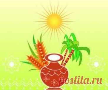 Сегодня 15 января памятная дата Понгал — праздник урожая в Индии