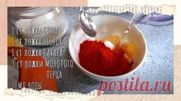 3 рецепта из пекинской капусты: быстро, просто, вкусно   Мой Прекрасный Дом