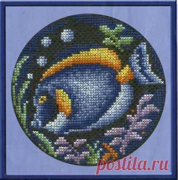 схема для вышивки крестом Рыбка - хирург