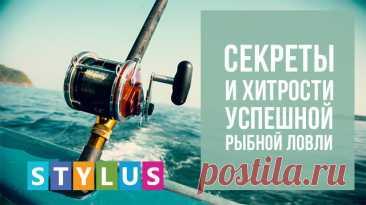 Секреты и хитрости успешной рыбной ловли | Stylus