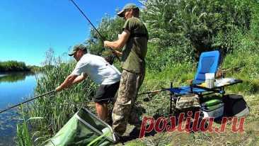 Неписаные правила рыбацкого этикета, которые должен соблюдать каждый рыболов | Рекомендательная система Пульс Mail.ru