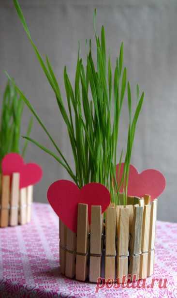 Как сделать цветочный горшок своими руками из обычных прищепок?