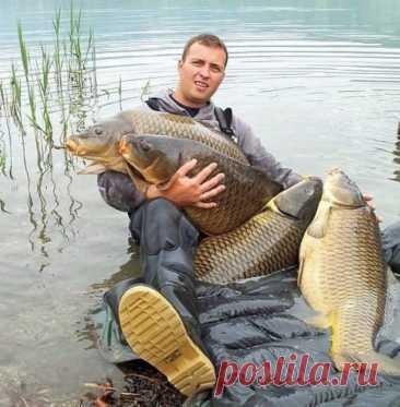 Путеводитель для рыбаков, советы и хитрости рыбалки – Рыбалке.нет
