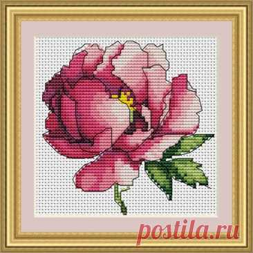 Mini cross stitch pdf pattern with pink peony. Tiny spring floral cross stitch pattern of peony art botanical embroidery perfect for hand stitched hobby time It's a WinZip archive that incluse a PDF…