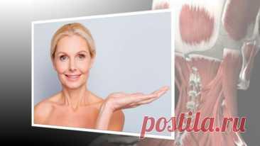 Лифтинг-массаж затылка, чтобы лицо поднять, а шею и плечи расслабить