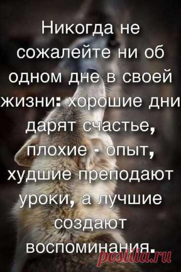 Письмо «Мы нашли новые пины для вашей доски «Умные мысли умных людей».» — Pinterest — Яндекс.Почта