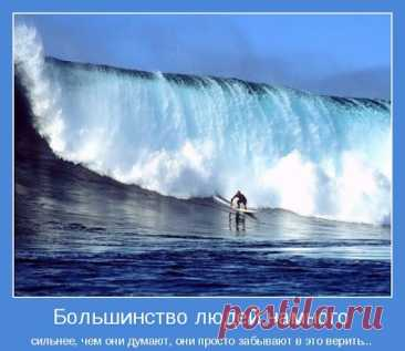 1585393950_37.jpg (512×444)