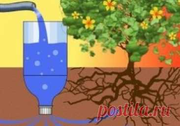 Secrets of production of drop watering from plastic bottles the hands