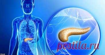 Для лечения поджелудочной есть 3 средства, о которых не рассказывают врачи - Образованная Сова Основные функцииподжелудочной железы— выработка пищеварительных ферментов и инсулина — гормона, регулирующего энергетический обмен глюкозы в тканях. Когда эти базовые процессы нарушаются из-за какой-то болезни, неизбежно страдает весь организм. Есть множество химических средств для лечения поджелудочной железы, новсе они вредны для печени. Как же быть? Воспользуйтесь одним из ...