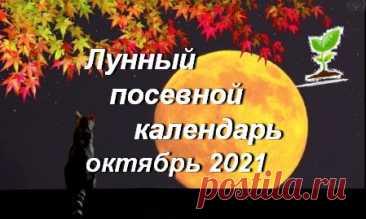 Лунный посевной календарь садоводов, огородников, цветоводов на Октябрь 2021 года (таблица), благоприятные дни | Дачный участок