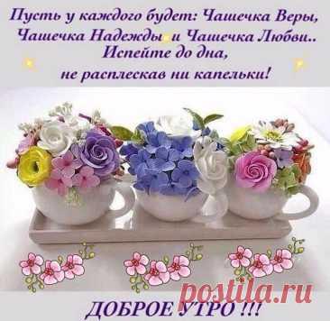 Доброе утро! Друзья!