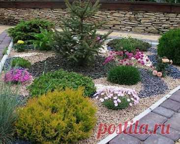 КОПИЛКА ЛАНДШАФТНЫХ ИДЕЙ. Гравийные, каменистые сады, рокарии и альпийские горки (в альбом https://vk.com/album-9333433_140882775 )  #альпийские_горки #сад_на_камнях #гравийный_сад