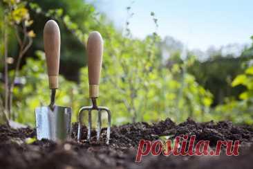 Работы в саду в апреле Работы в саду в апреле: обход и уборка участка, обработка, подкормка, посадка плодово-ягодных культур, посев зеленых культур, уход за многолетними и рассадой.