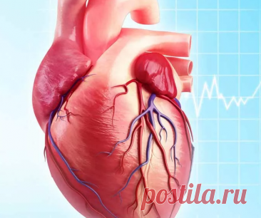 Ишемическая болезнь сердца: причины, признаки, принцип лечения | 💑 ПСИХОЛОГИЯ ЖИЗНИ 💑 | Яндекс Дзен