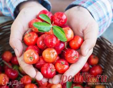 Время укреплять здоровье: в каких продуктах искать витамин C. Кулинарные статьи и лайфхаки