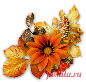 Осенние кластеры