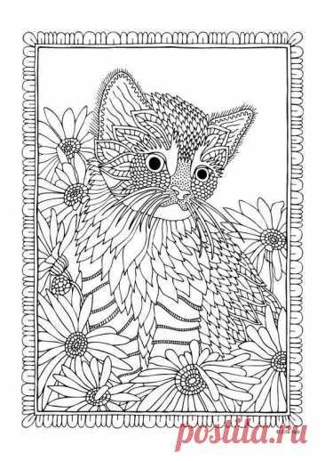 Милые кошечки(раскраска антистресс)