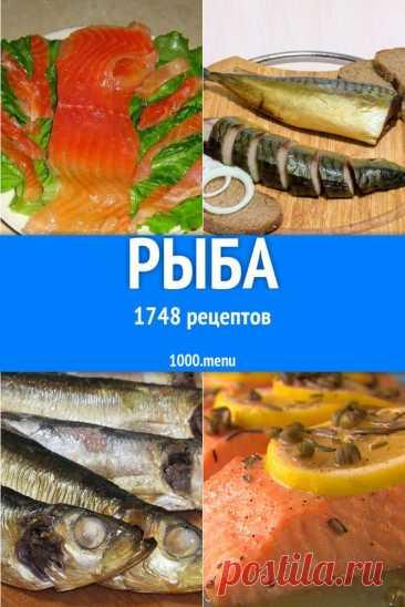 Рыбные блюда превосходят курицу, говядину и свинину по содержанию питательных веществ и микроэлементов во много раз. Посмотрите на японцев, к примеру, у которых дары моря включены в ежедневный рацион…