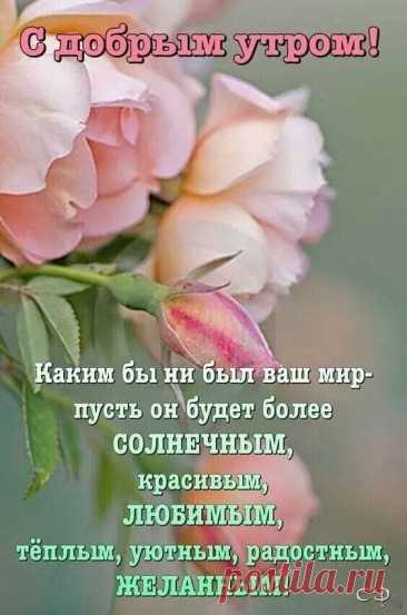 """Фотоальбом Разное группы Поздравление друзей """"Бесплатно"""""""