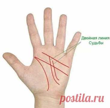 5 знаков на руках, указывающих на то, что вы - баловень судьбы - Сонники, гороскопы, гадания - медиаплатформа МирТесен