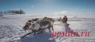 Ямал, где олени правят бал, ледолазание на Алтае и ещё семь направлений по всей стране, где можно успеть вдоволь насладиться зимой – в подборке маршрутов от National Geographic Traveler Россия.