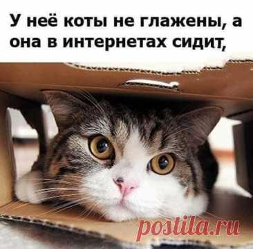 (2083) Pinterest