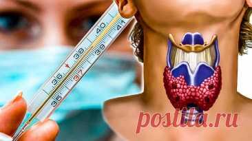 Температурный тест для проверки работы щитовидной железы