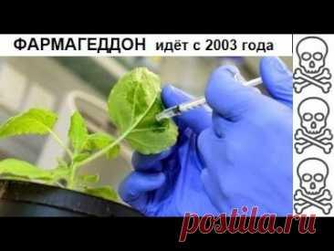 ИНТЕР-НОДДС - ФАРМАГЕДДОН. преступления фармакологической мафии