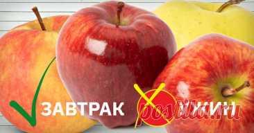 Диетолог предупреждает! Как меняются свойства продуктов в зависимости от времени суток. Обрати внимание, если хочешь похудеть.