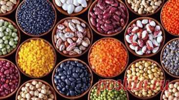 Не выбрасываю семена плодов, а использую для лечения. Метод простой, безопасный и эффективный В одной из предыдущих статей (смотрите здесь) я обещала рассказать, какие конкретно семена лучше использовать для лечения конкретных болезней. Но сначала напомню, что метод укрепления здоровья при помощи употребления в пищу пророщенных семян, получил в последнее время широкое распространение. Добавленные в салат, в кашу, пророщенные семена дарят нам витамины и энергию. Природа дае...