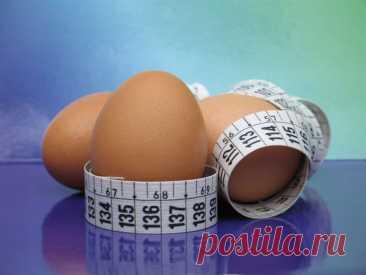 Яичная диета - 61 фото вариантов приготовления яиц для похудения