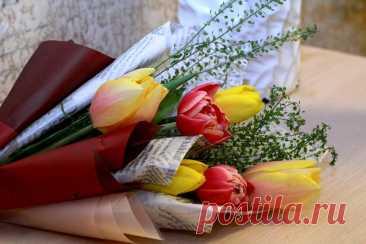Три дня до 8 Марта 2021: Какой подарок купить маме или сделать своими руками? Топ-10 шикарных идей - Александр, 05 марта 2021