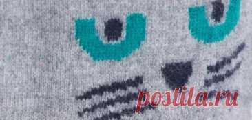 El pulóver femenino por los rayos del (esquema)