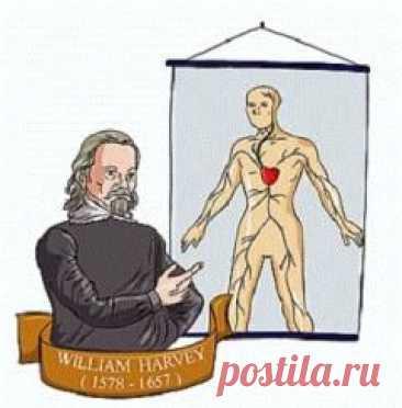 Сегодня 16 апреля в 1618 году Уильям Гарвей впервые изложил новый взгляд на систему кровообращения в организме человека