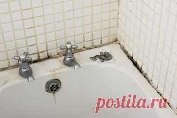 Как избежать появления плесени в ванной комнате | Luxury House | Пульс Mail.ru Чтобы не допустить появления этой неприятности, нужно чтобы в ванной комнате воздух не был слишком теплым и влажным. Сделать это совсем не трудно....