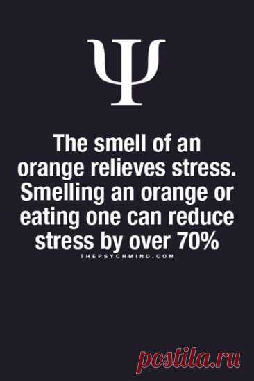 The smell of an orange