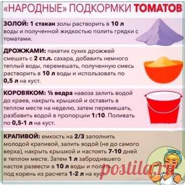 Девочки, нашла отличную шпаргалочку для посадки и уходу за данными томатами. Сохраняйте себе