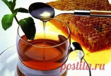 Жиросжигающий напиток из меда и корицы - Образованная Сова