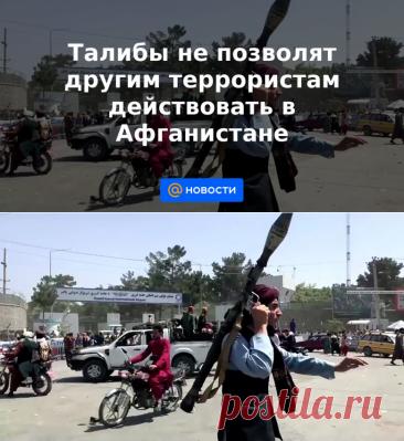 Талибы не позволят другим террористам действовать в Афганистане - Новости Mail.ru