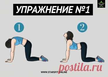 Болит поясница? Делай эти 7 упражнений для профилактики. | STARSFIT - здоровый образ жизни | Яндекс Дзен