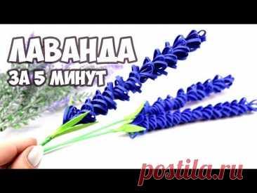 ЛАВАНДА из фоамирана   Красивый БУКЕТ на ПОДАРОК 8 МАРТА