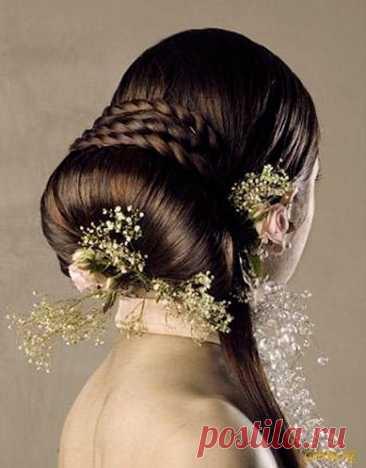 Секрет чистых волос - Образованная Сова