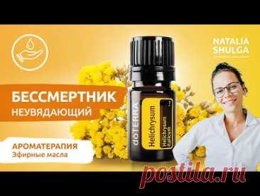 БЕССМЕРТНИК - натуральное омоложение организма   Эфирное масло - полезные свойства и применение
