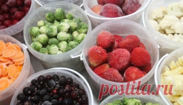 Список продуктов, которые можно заморозить на зиму