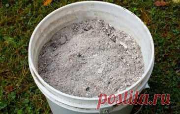 Зола как удобрение: когда не полезна для почвы и какие растения золу не любят | 6 соток