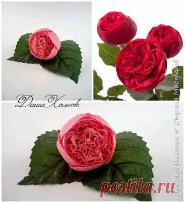 El maestro la clase - como hacer la rosa.
