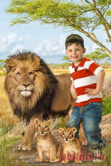 """Детский летний фотошаблон в PSD """"Саванна и львы"""""""