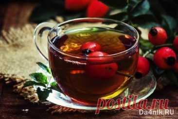 Травы из которых делают травяной чай   6 соток